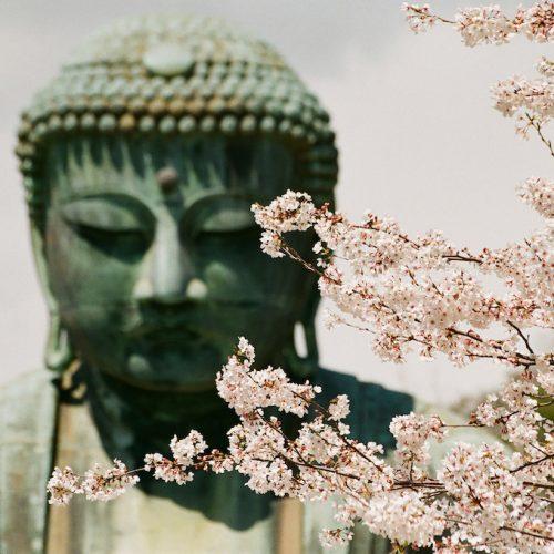 Excursão do espírito do Japão