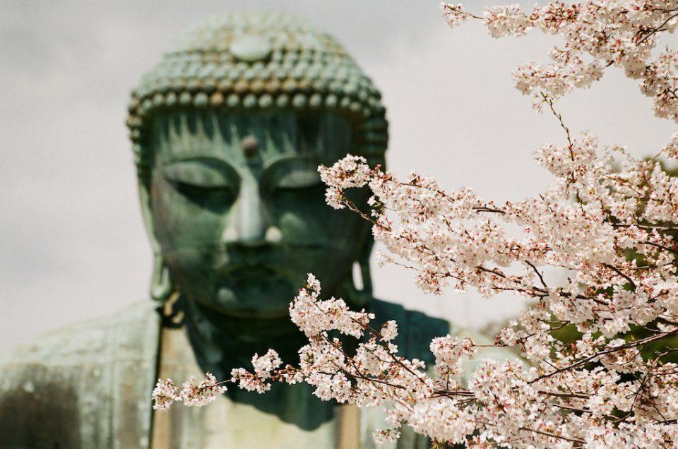 A janela do nariz do Buda