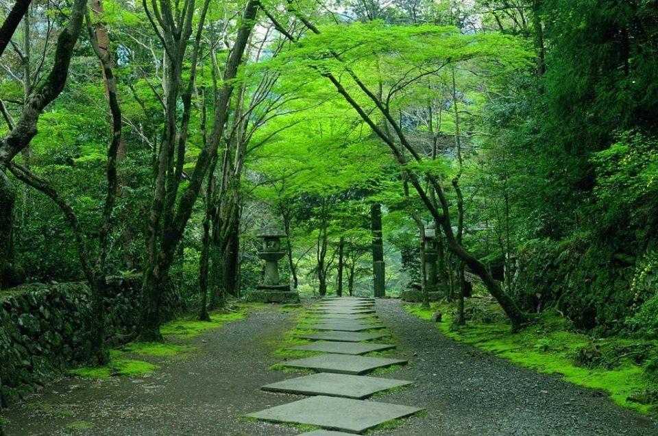 Pedras do amor de Kyoto