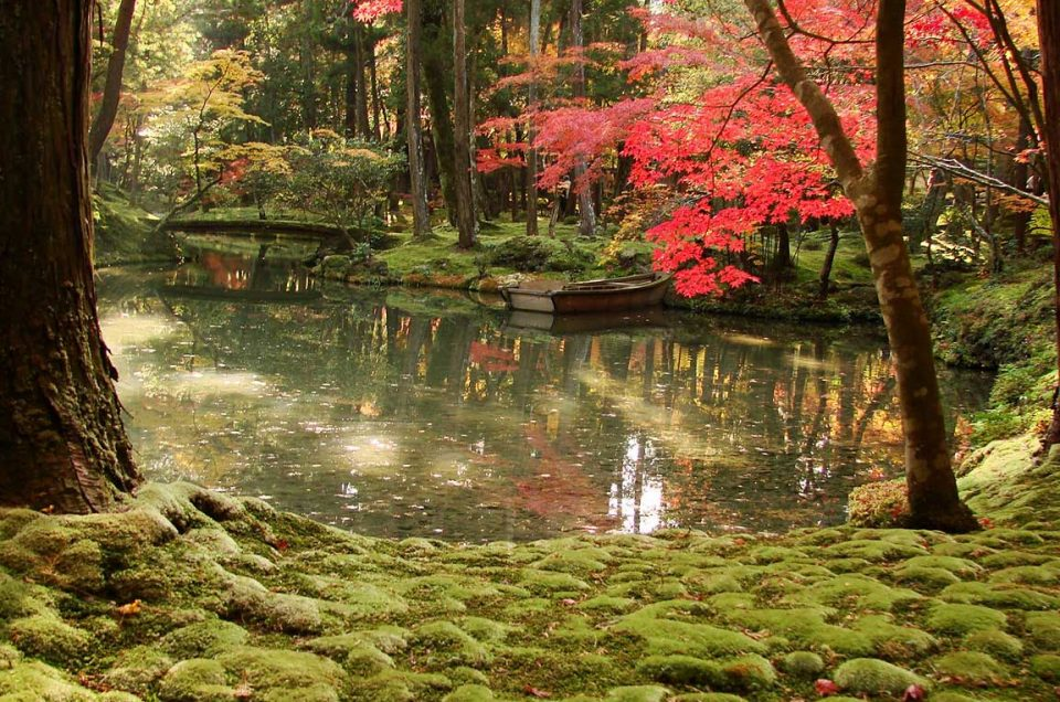 Jardim de musgo Saiho-ji