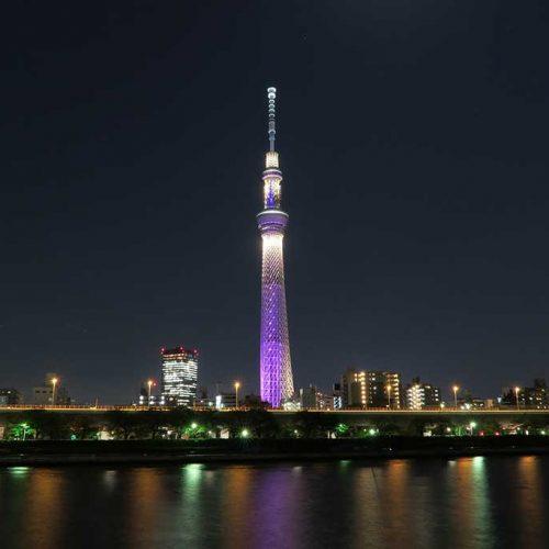 Excursão Hokkaido, Tohoku e Japão Central (rota inversa): Festival de Takayama